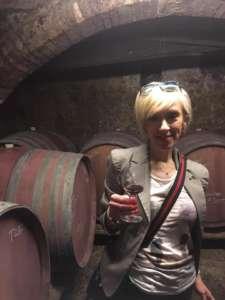 pacina wine tour